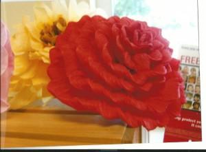 red flower (2)